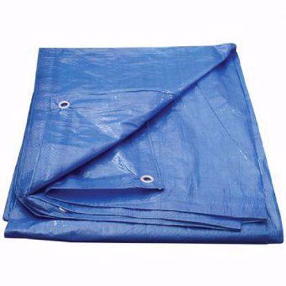 Obrázek Plachta s oky 4x6 m, 70 g/m2, modrá