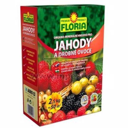 Obrázek Hnojivo na jahody a drobné ovoce FLORIA 2,5 kg