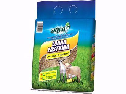 Obrázek AGRO Travní směs LOUKA a PASTVINA 2 kg