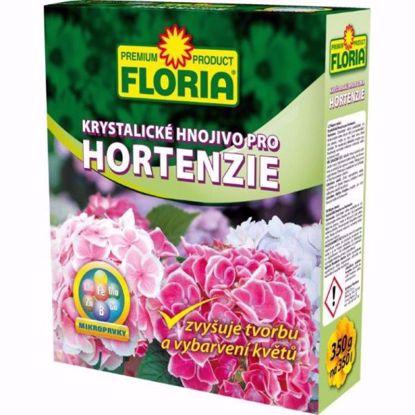 Obrázek FLORIA krystalické hnojivo pro hortenzie 350 g